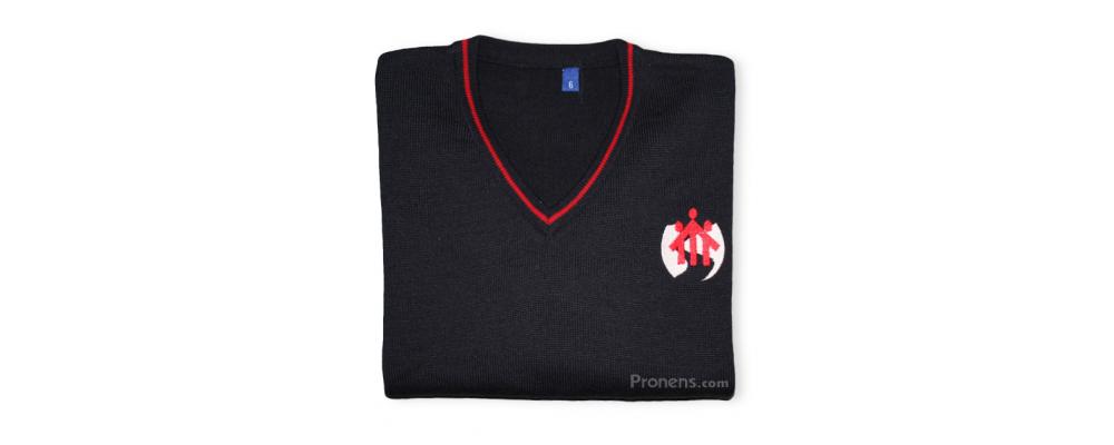 Jersey colegial personalizado - uniformes escolares Pronens
