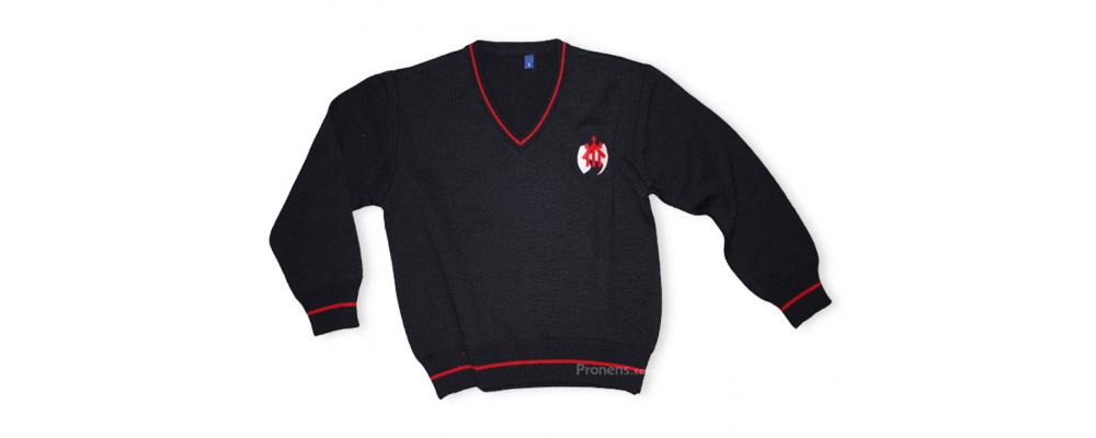Jersey escolar personalizado - uniformes escolares Pronens