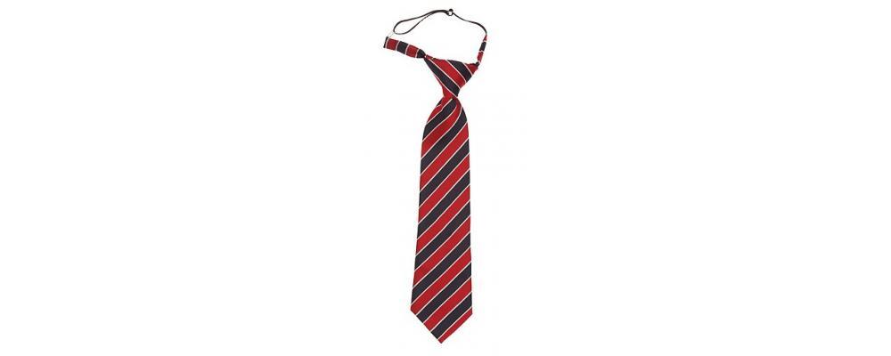 Fabricante de corbata escolar con nudo - Corbatas escolares Pronens