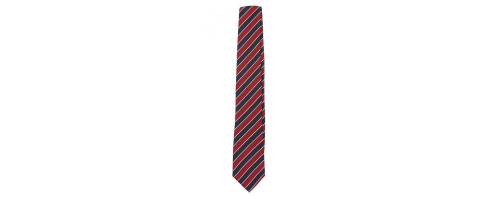 Fabricante de corbatas personalizadas - Corbatas colegiales Pronens